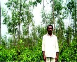 Apparao, with Eucalyptus plantation on the background