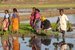 Insecure land tenure- one of the constraints for farmers to invest on land