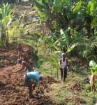 Financing small farmers-an innovative methodology