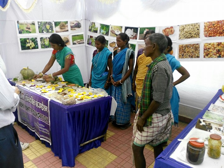 Diverse forest food on display
