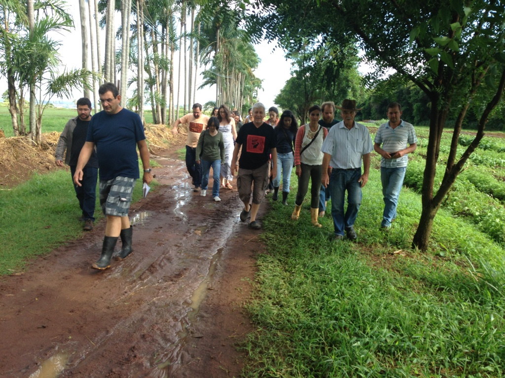 Visiting Yamanuishi farm in Sao Paulo state, Brazil.