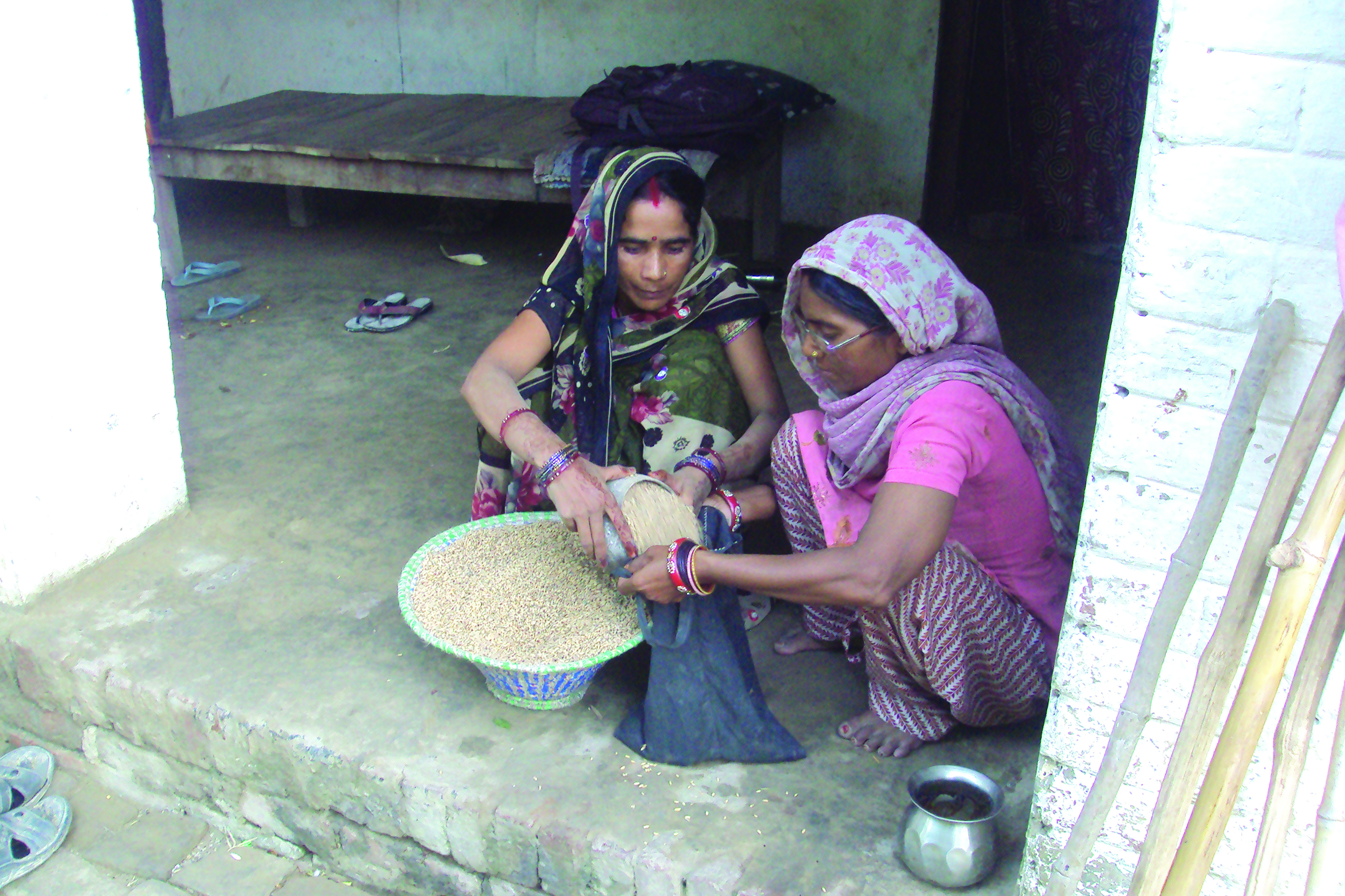 Access to seeds improved due to sharing with each other