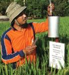 A farmer measures rainfall in his field