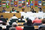 Civil Society delegates deciding on the priorities