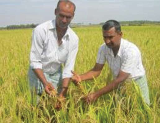 Anjaneya on his farm