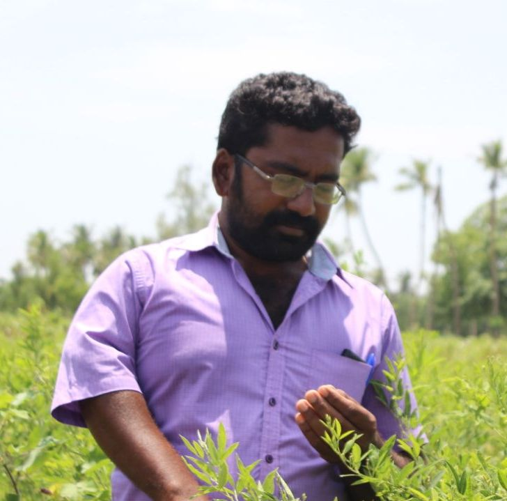 Kalaiselvan - Making the most of mixed cropping system